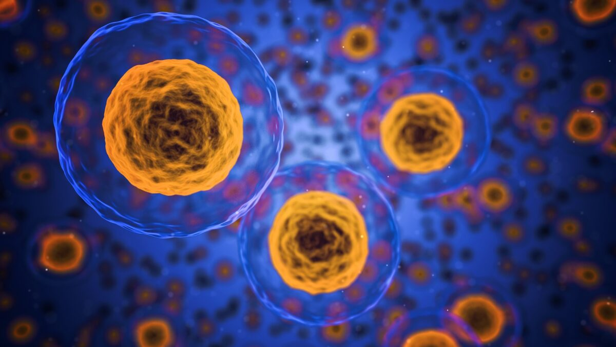 Oncolytic Virotherapy Market News