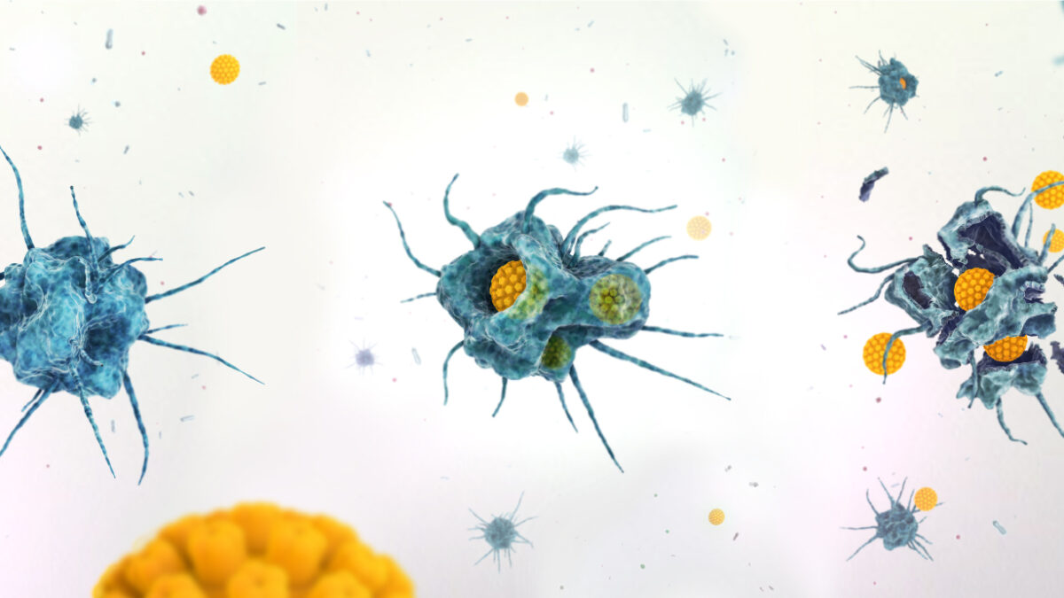 Oncolytic Virotherapy and Cancer Treatment